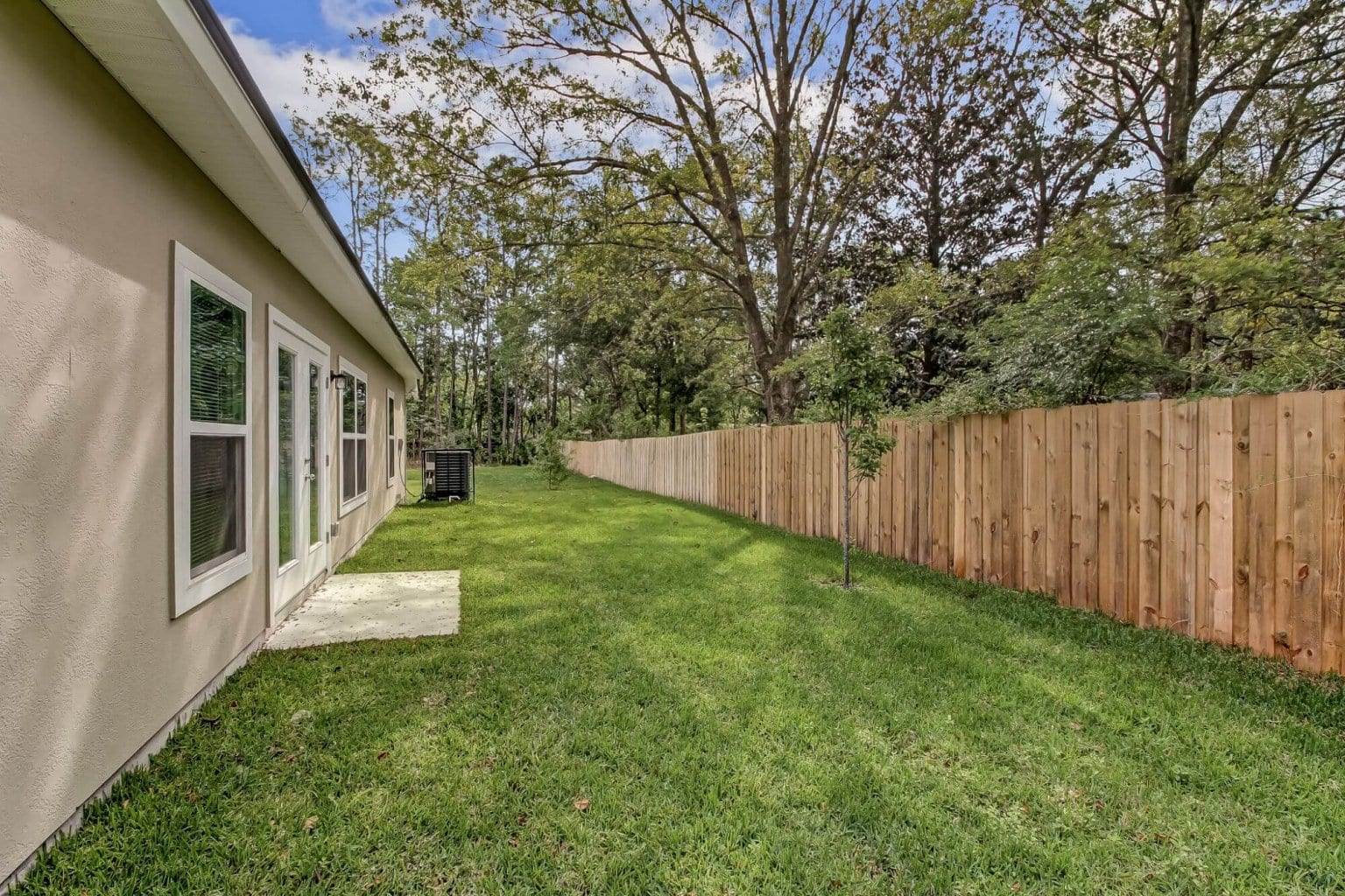 backyard and fence